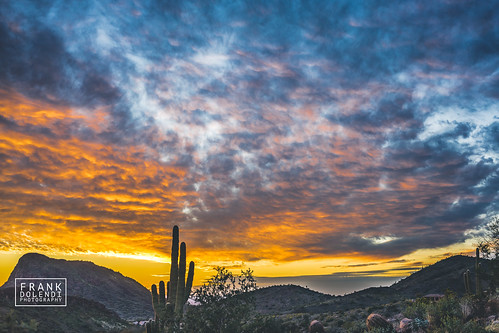 sunsets arizona fountainhills desert mountains sunset landscapes landscapephotography landscape sony a72 a7ii 35mm zeiss nature parks cactus cacti deserts sonnar3528za