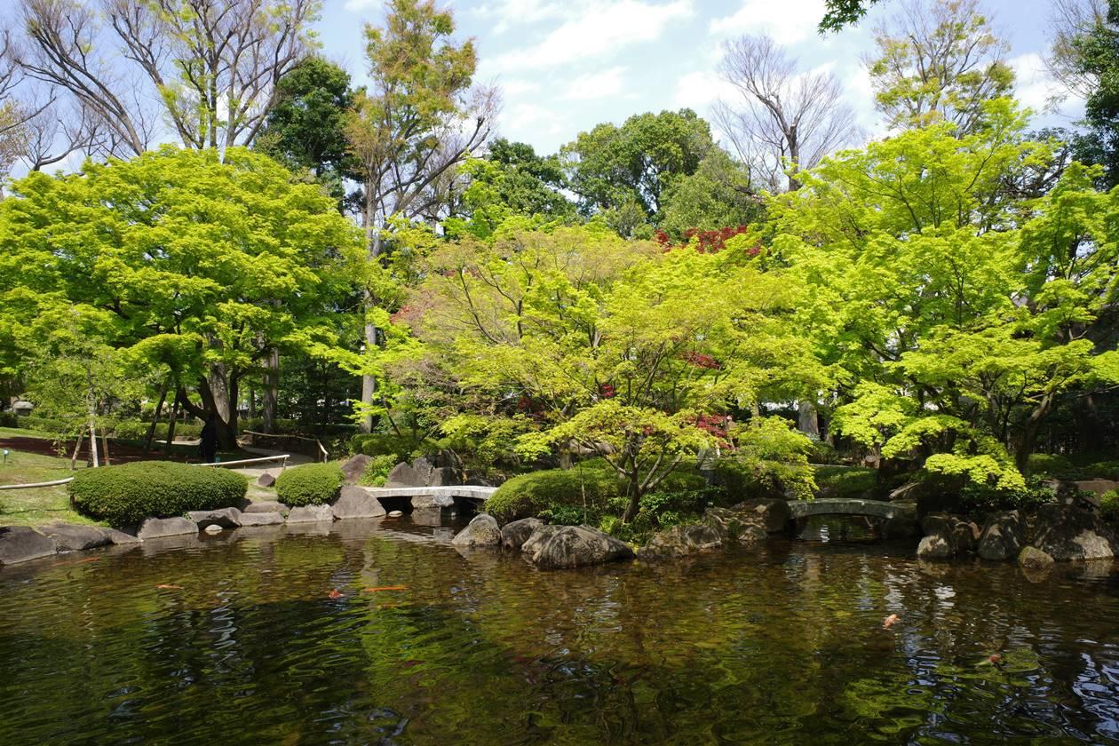 大田黒公園の池