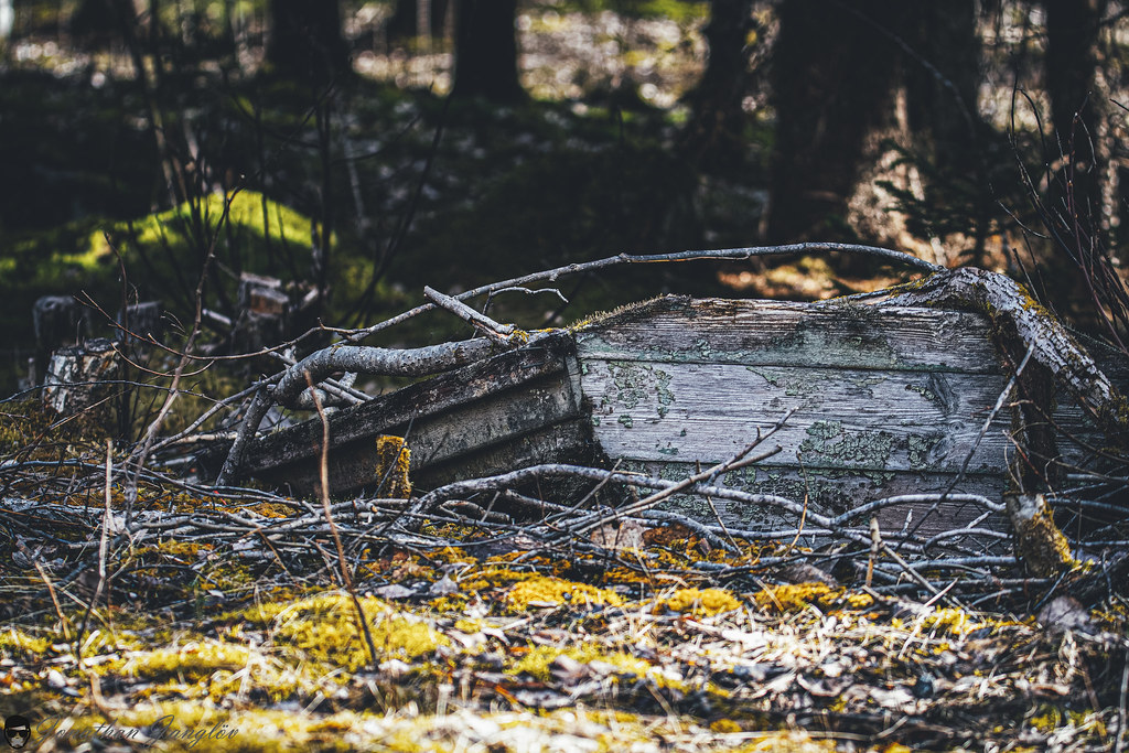 Old boat in nature