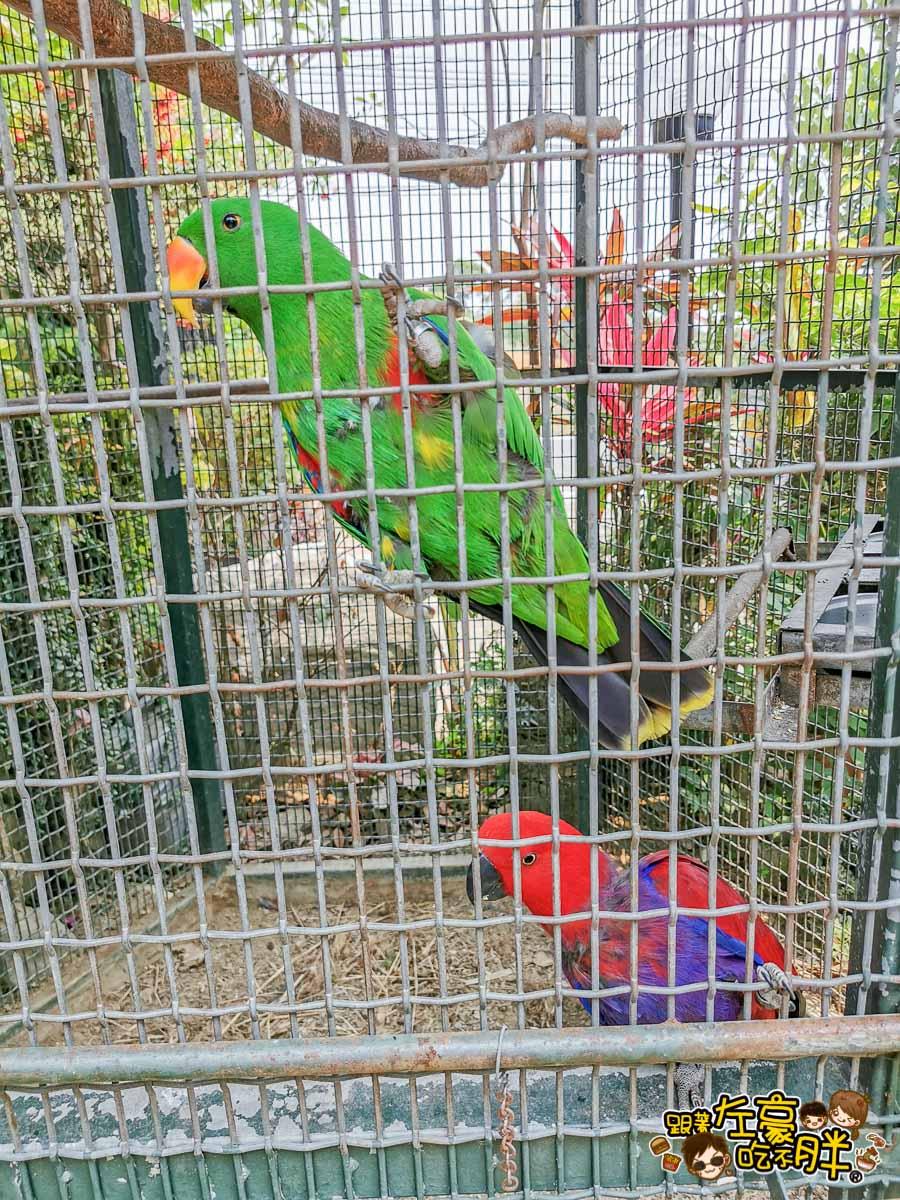 鳥松自在園 隱藏庭園餐廳-37