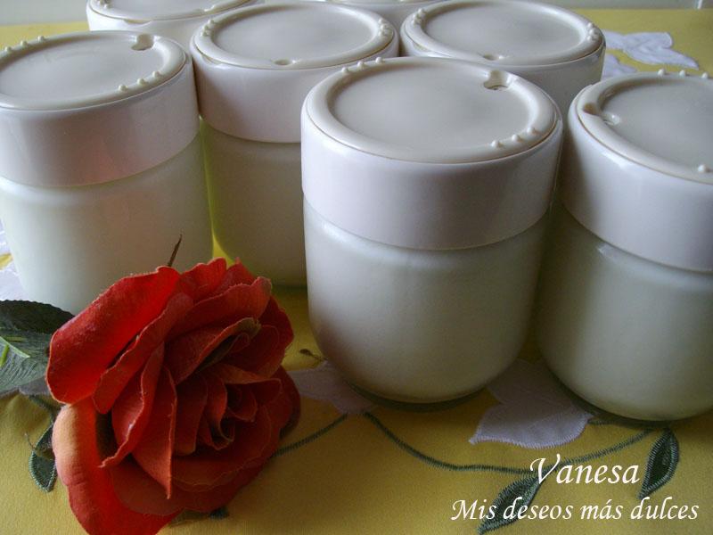 YogurNaturalCasero03