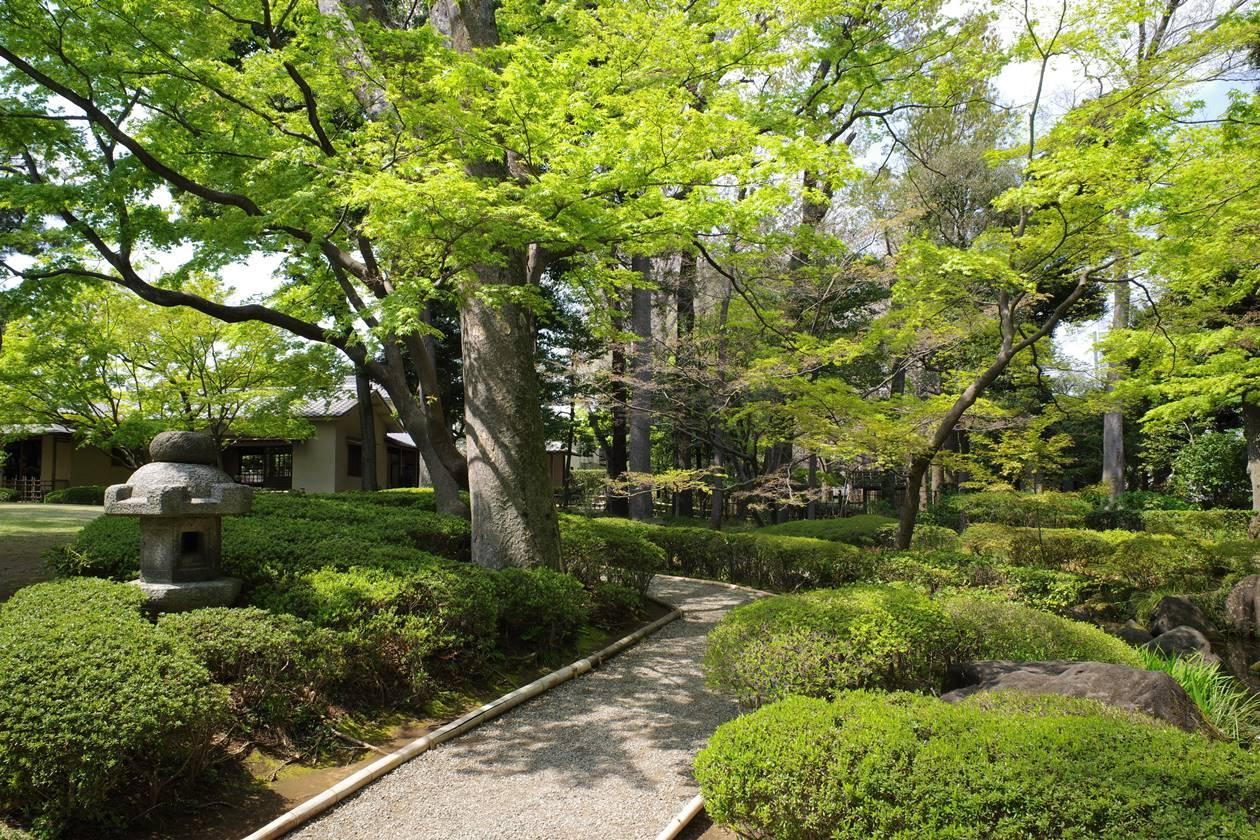 大田黒公園の日本庭園