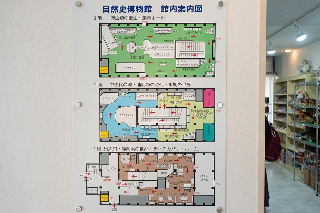 TOKAI_Univ_Dinosaur_Hall-26