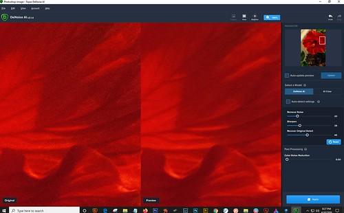 Screenshot of Topaz DeNoise AI interface
