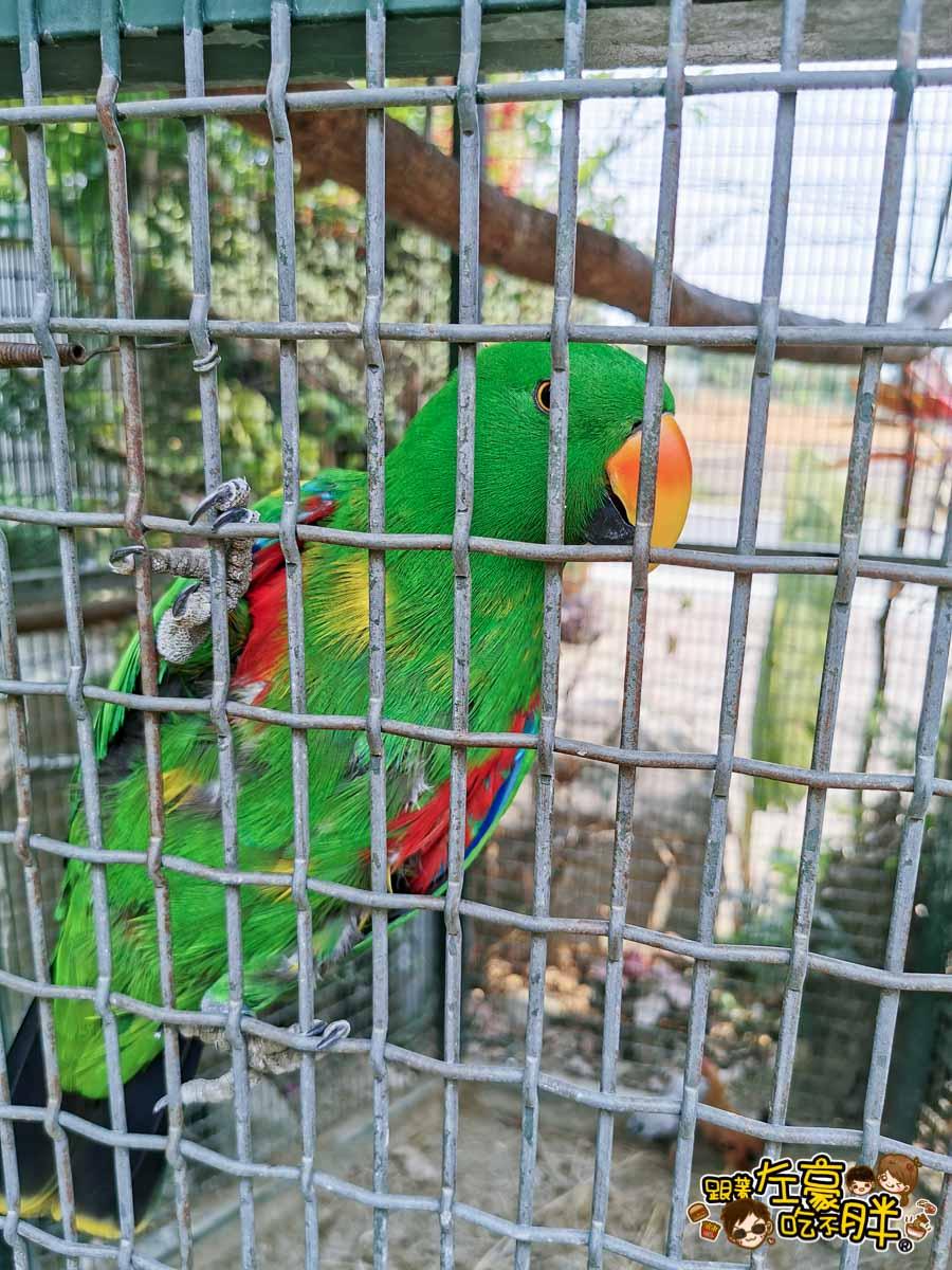 鳥松自在園 隱藏庭園餐廳-17