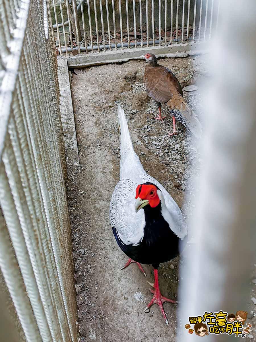 鳥松自在園 隱藏庭園餐廳-8