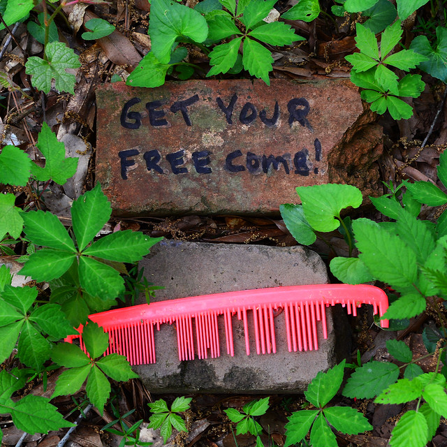 Get Your Free Comb