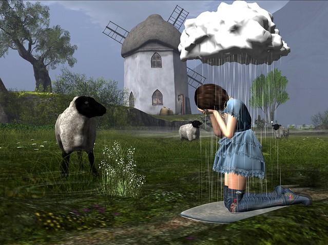 Tears and Sheep