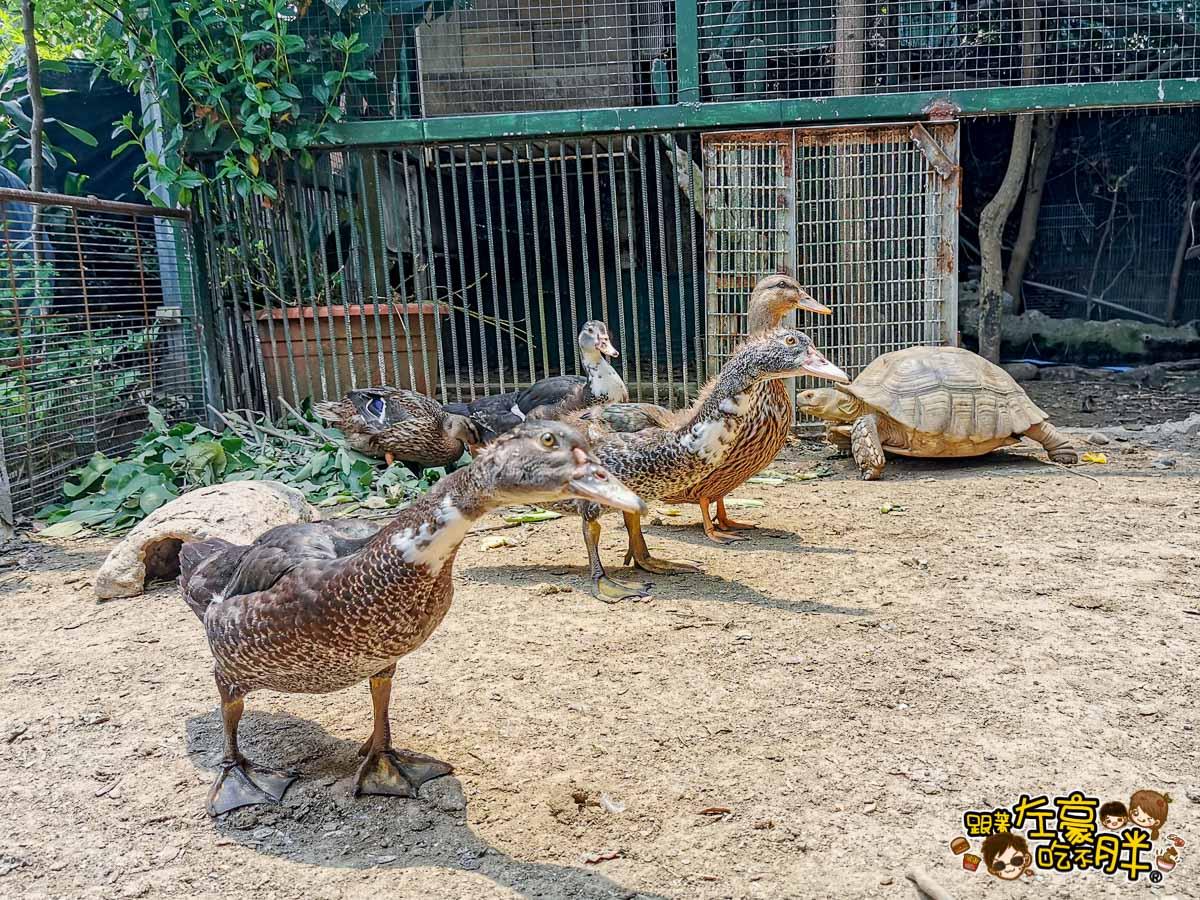 鳥松自在園 隱藏庭園餐廳-14