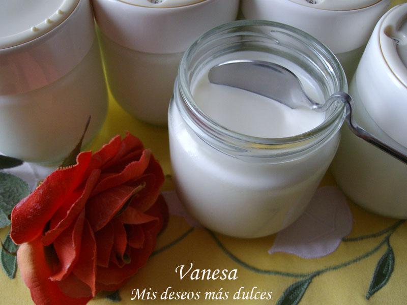 YogurNaturalCasero05