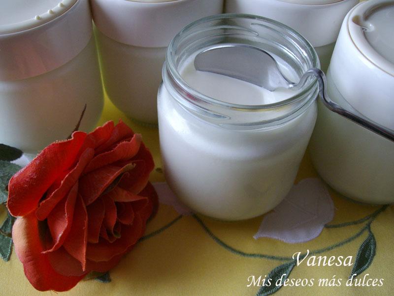 YogurNaturalCasero01