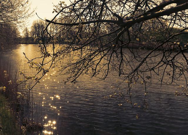 'Liefkenshoek' - Beveren - Belgium