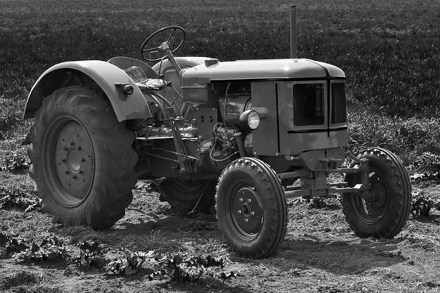 Deutz oldtimer in the field.