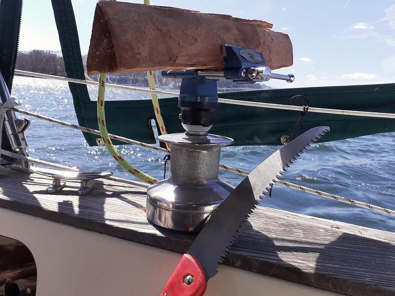 Cetacean Sawmill