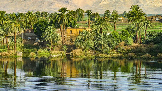 idyll on the banks of the Nile