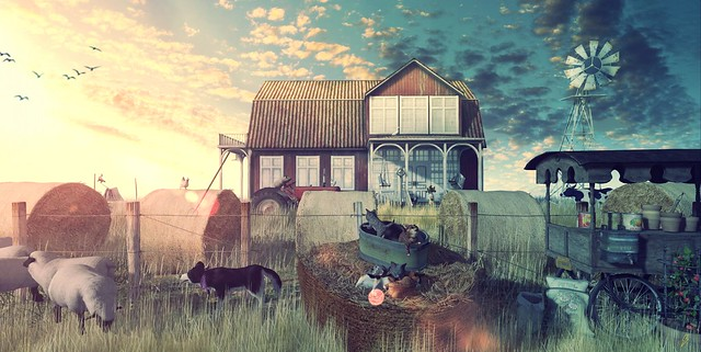 ⚡ Animal farm....
