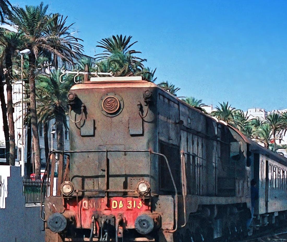 Chemins de Fer au Maroc - ONCF  - Page 4 49761729807_8725ed466c_o_d