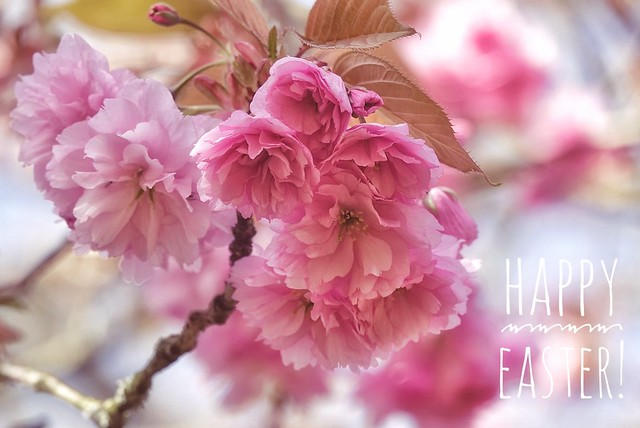 A Happy Easter to those that celebrate!