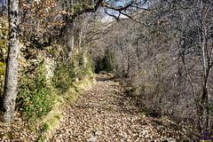 Camino de Suaso