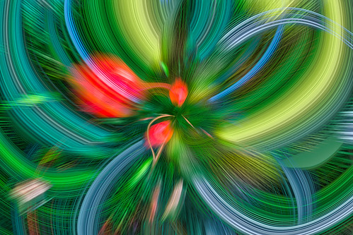 A Colorful Abstract