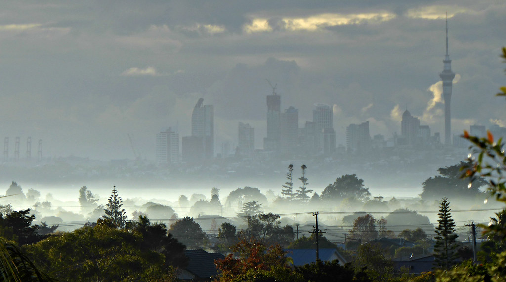 Auckland Early Morning