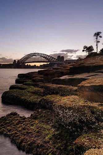 newsouthwales australia new sydney barangaroo millers point dawn sunrise harbour bridge