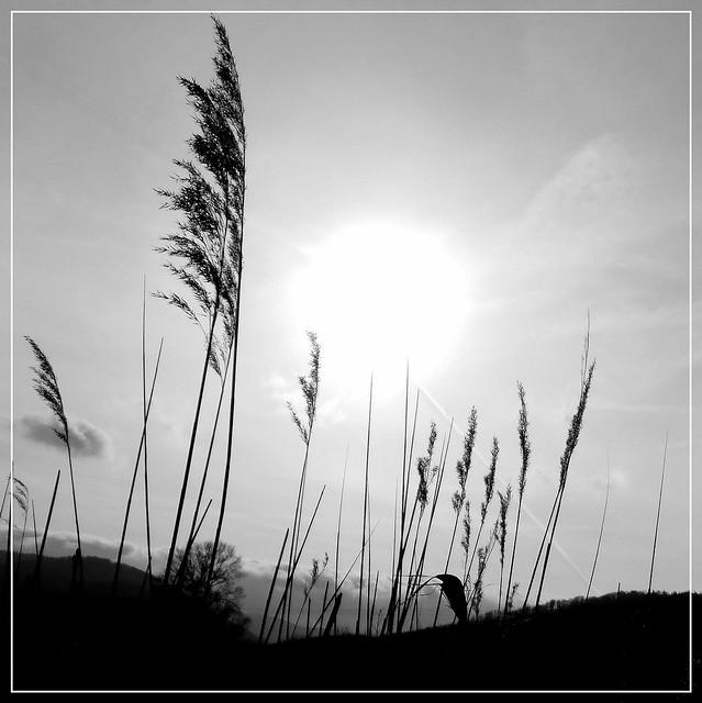 Zachód słońca w Górach Sowich.