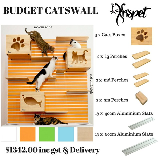 CatWall 2