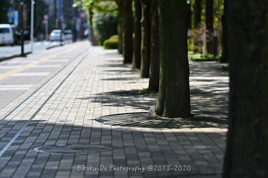 ZED_0514-Edit