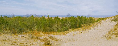 panorama trees pinetrees dunes lakemichigan lakeshore lake clouds