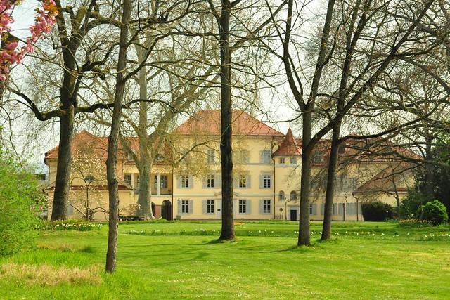 April 2020 ... Kleiner Spaziergang im Schlossgarten Neckarhausen ... Brigitte Stolle