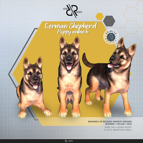 [Rezz Room] German Shepherd Puppy (Companion)