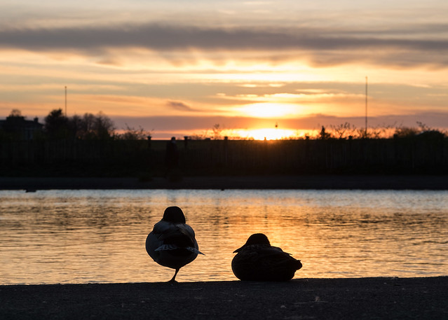 Blackheath sunset