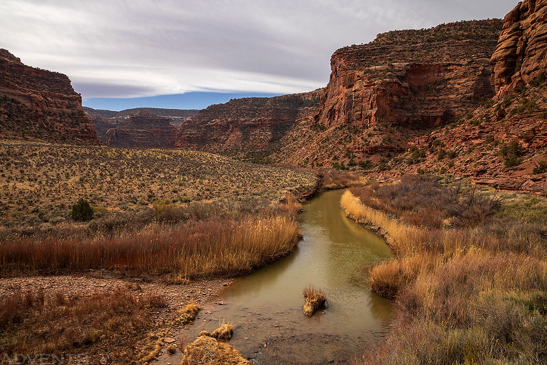 Dolores River from La Sal Creek