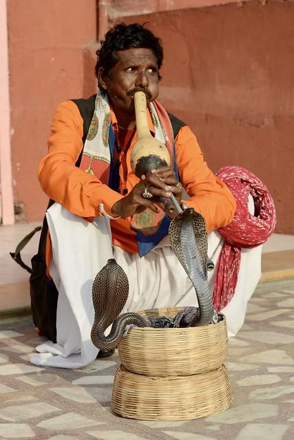 INDIA: Rajasthan - Jaipur