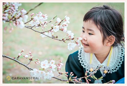 桜の木の下で 入園記念のロケーション撮影 制服を着た女の子