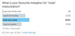 sondage13