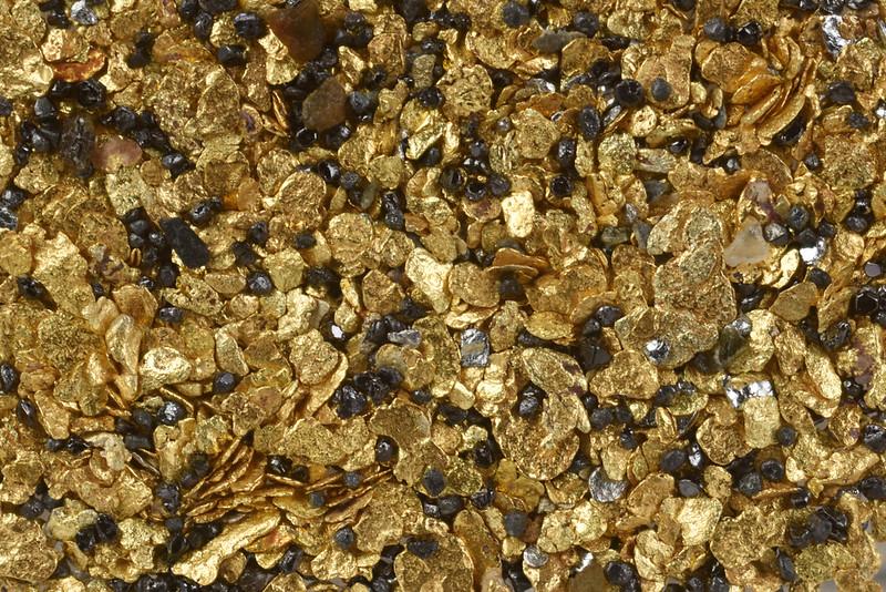 浜金&浜白金 / Beach Placer Gold &PGM