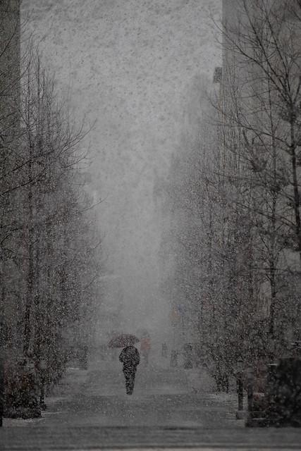 lumisade katunäkymä_