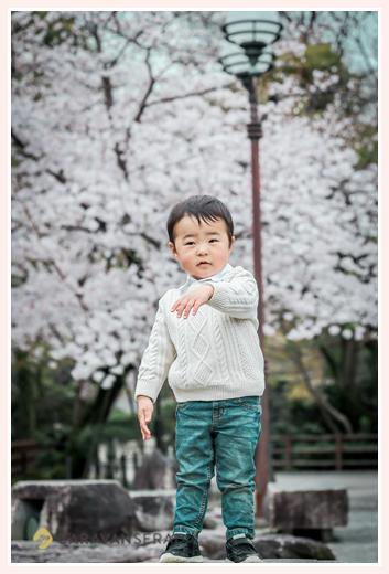 2歳のバースデーフォト 男の子 桜の花咲く公園で