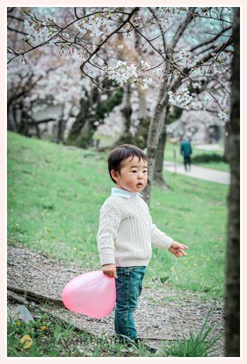 桜の花咲く春の公園でロケーション撮影 2歳の誕生日を迎えた男の子
