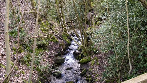 Upstream, Maple Dean Clough