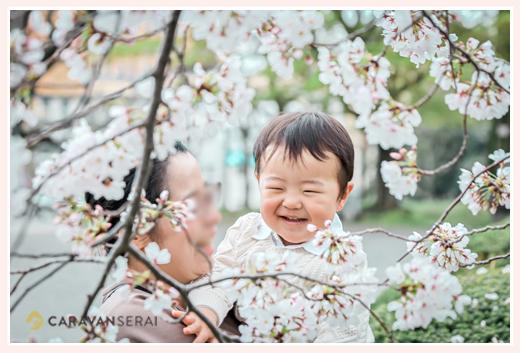 満開の桜と共に 親子写真 2歳のお誕生日を迎えた男の子