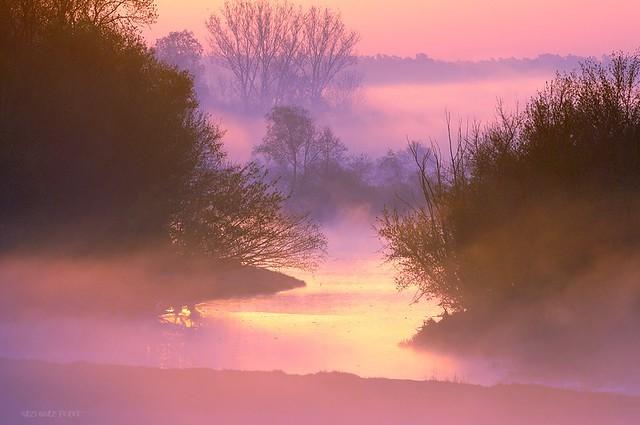 Fog on the water / Mgła na wodzie