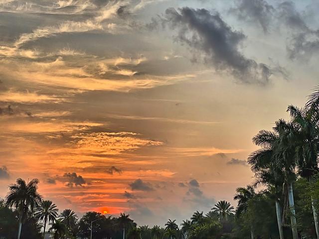 Sunrise 03-20200413