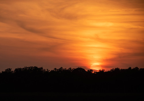 myakkariver statepark sarasotaflorida sunset sun landscape myakka river state park sarasota florida