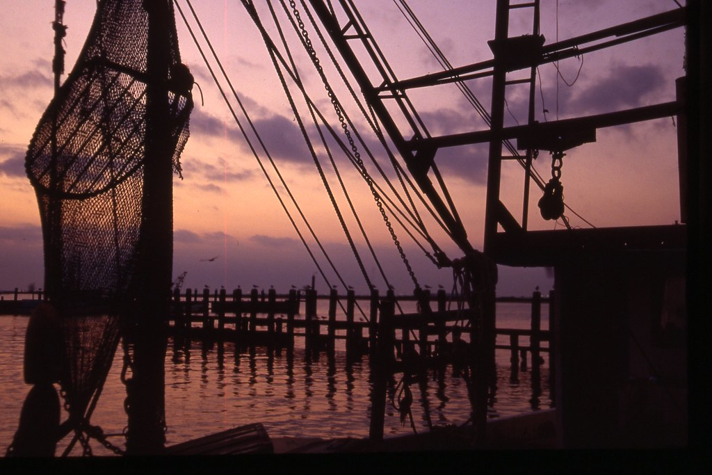 Shrimp Nets at Night - Sailor's Delight