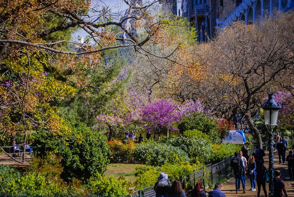 Pure springtime! Beautiful spring colors 10:27:32 DSC_2585