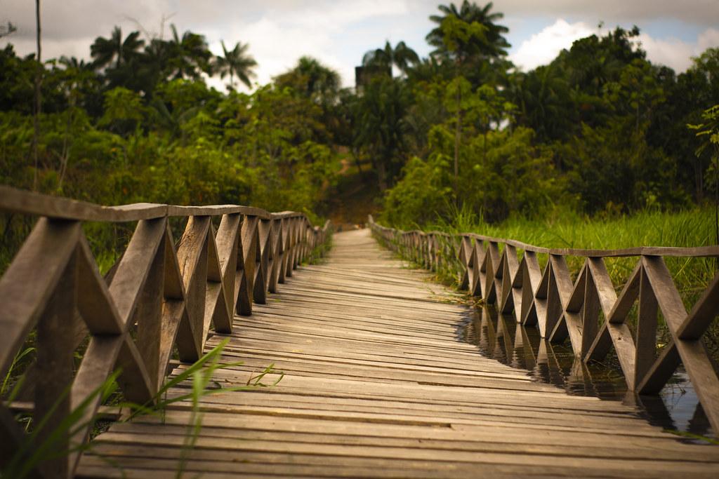 Puente Amazonas - Colombia