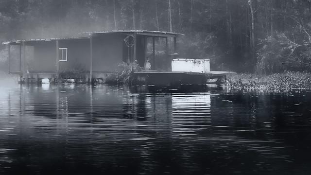 In a Foggy Blackwater Bayou